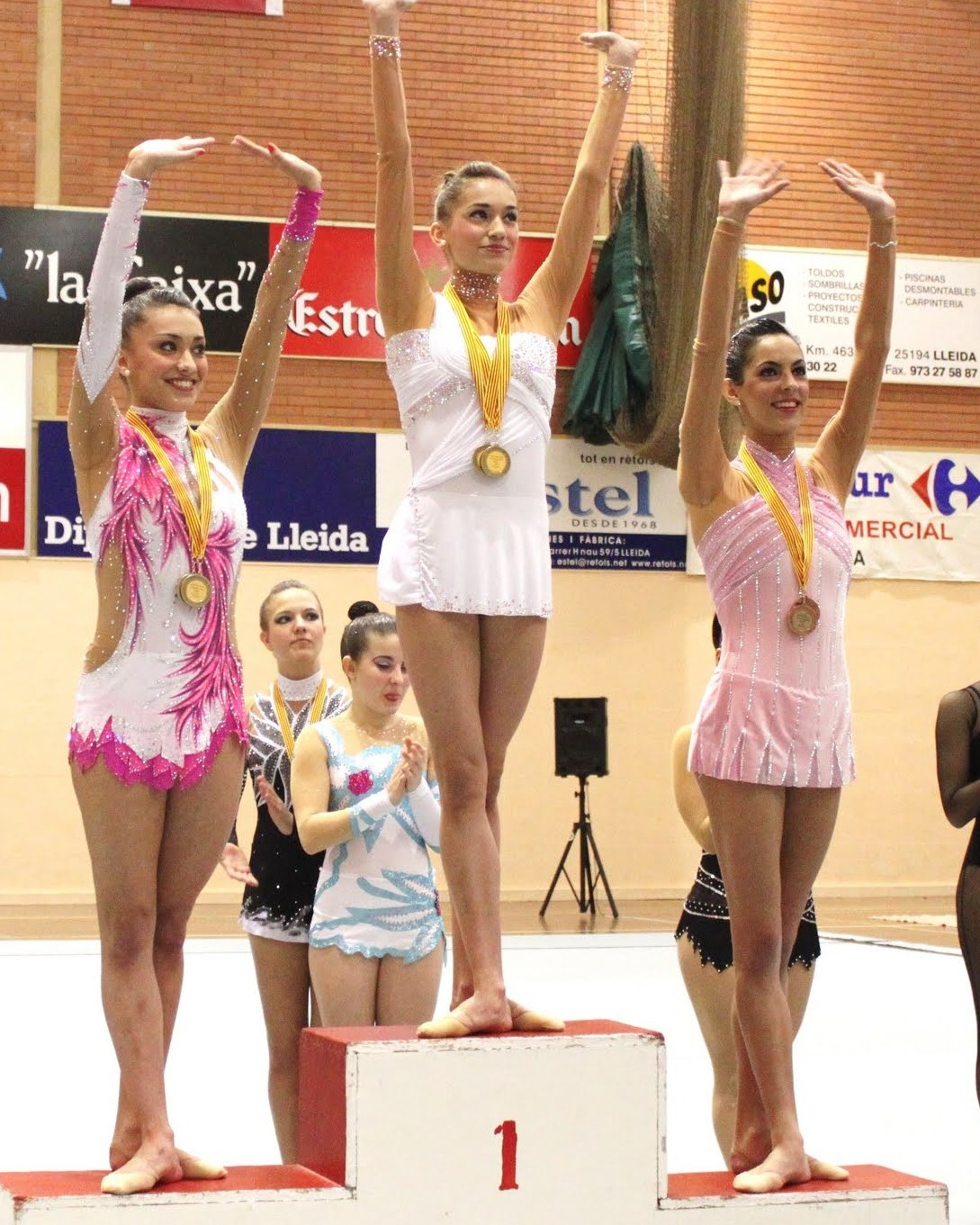 Provincial 2011